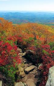 asheville rentals for fall foliage greybeard rentals