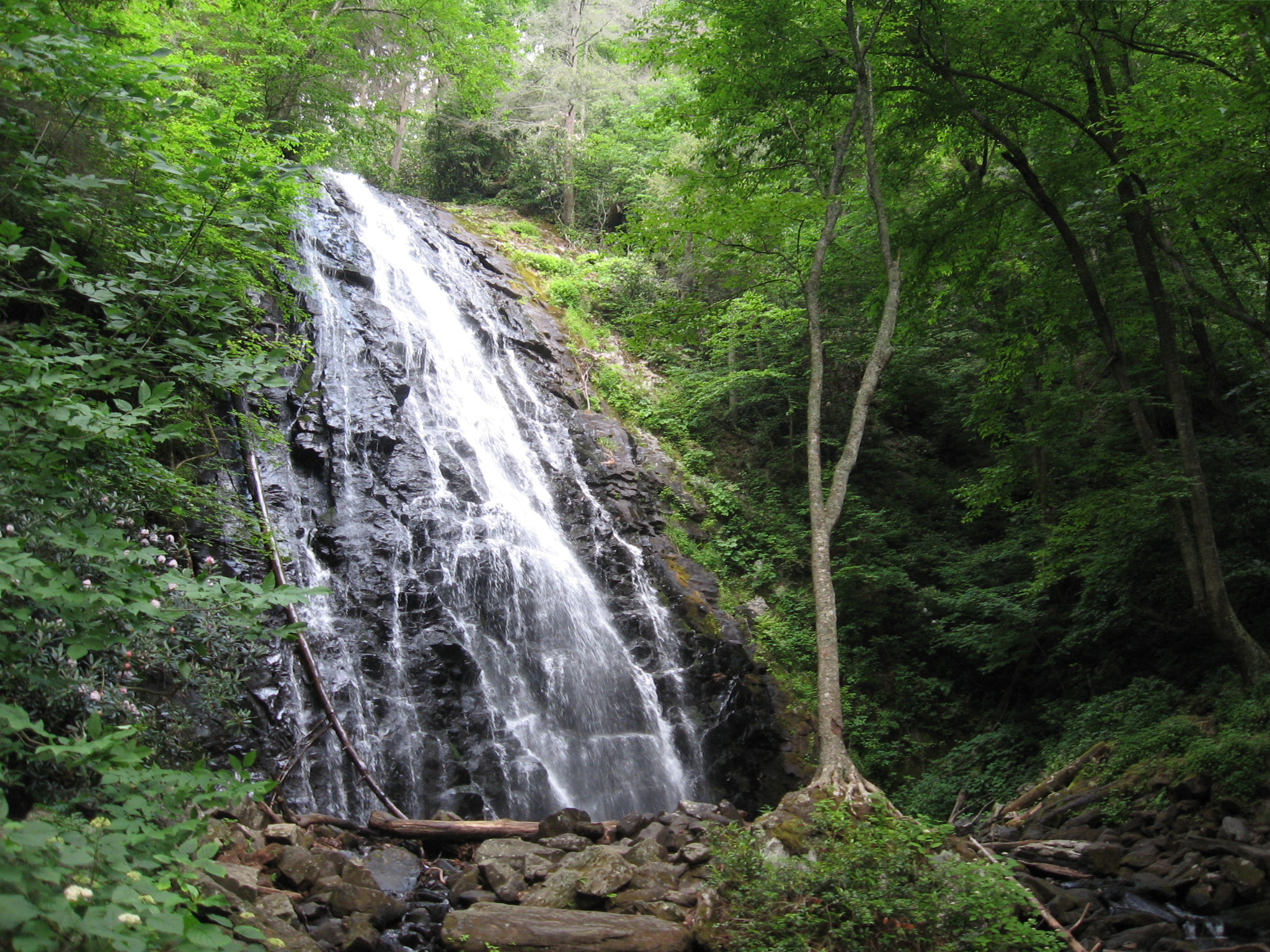 Asheville Area Waterfall